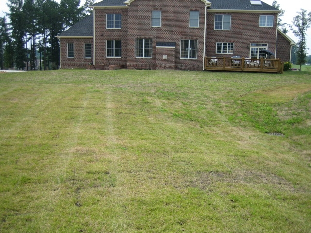 Terrible Lawn Pictures Lawnsite
