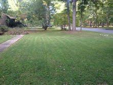 102 woodville front yard.jpg