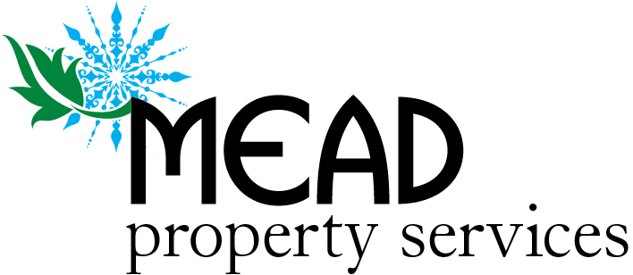 11039 Mead Property Services_Logo_FNL[1].jpg