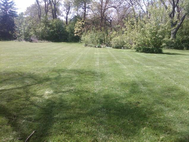 2.5 foot yard after.jpg