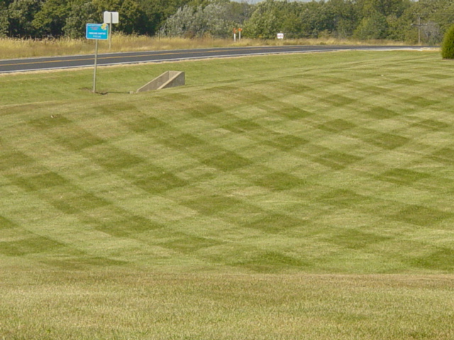 2007 lawns pics 018.jpg