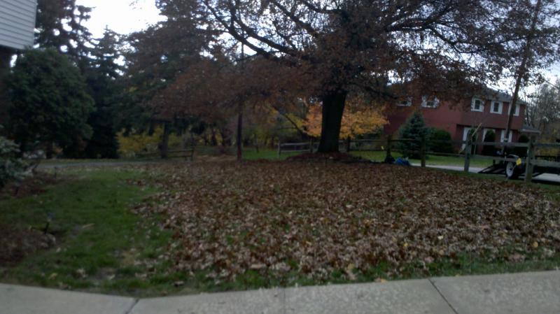 2011-11-11_13-42-11_781.jpg