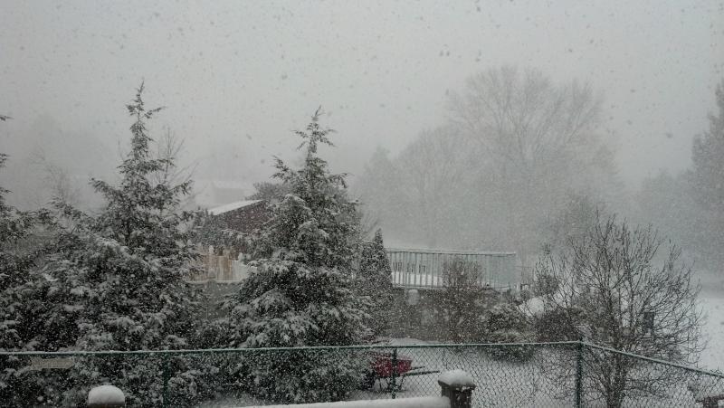 2012-01-03_13-35-18_471.jpg