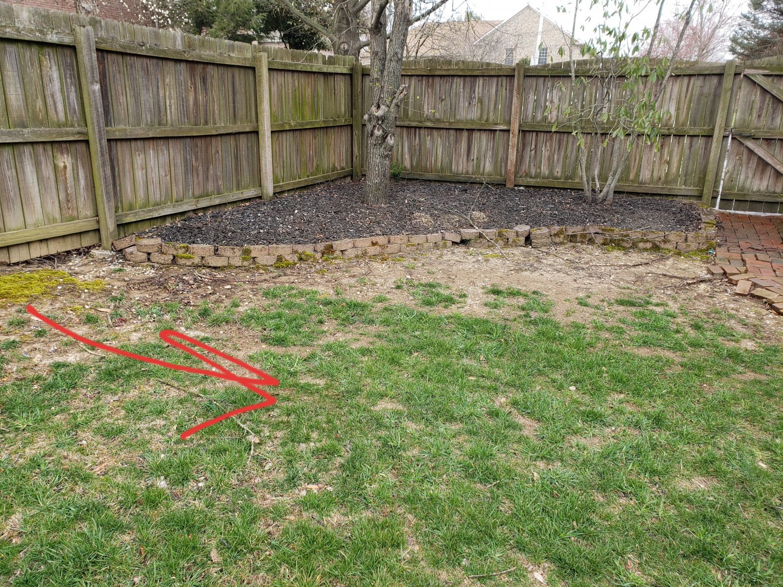Backyard drainage issues | LawnSite.com™ - Lawn Care ...