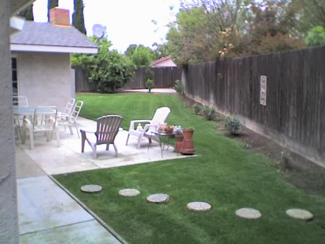Account - Ann Pape Back Lawn.jpg
