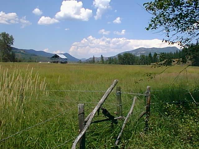 Across Hayfield N.JPG