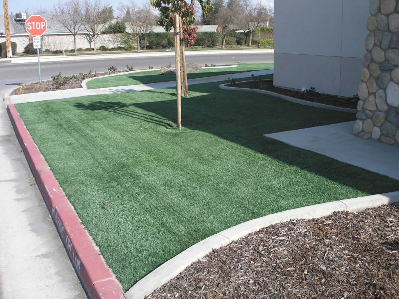 Artificial Turf IV-02.jpg