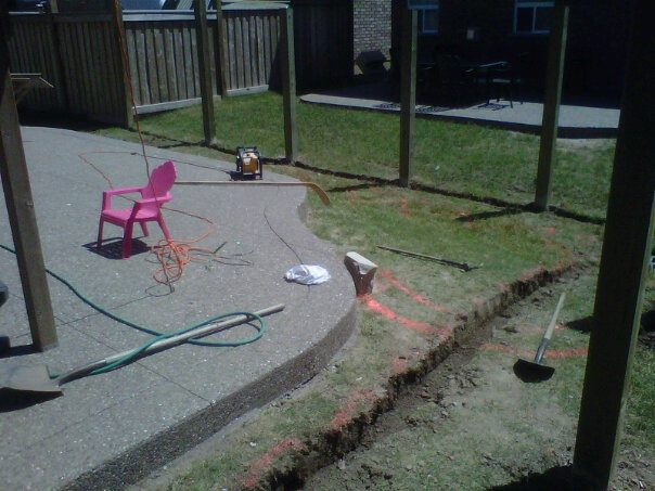 Backyard beginning.jpg