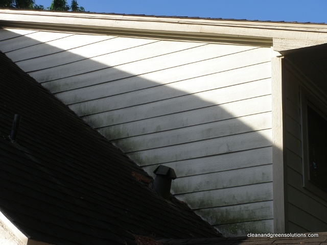 Before Dirty Siding.JPG