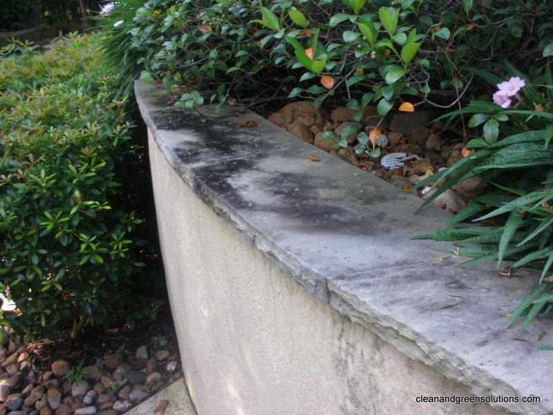 before pressure washing the woodlands.jpg
