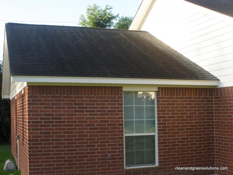 Before Roof Cleaning Spring tx.jpg