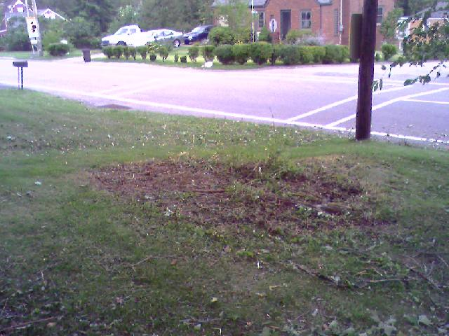 Bergandy apt-brush pile after.jpg