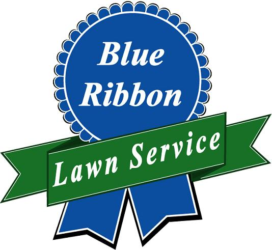 blue ribbon new final lawnsite.jpg