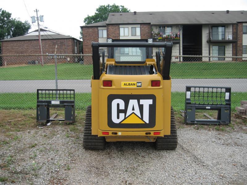 cat 001.jpg