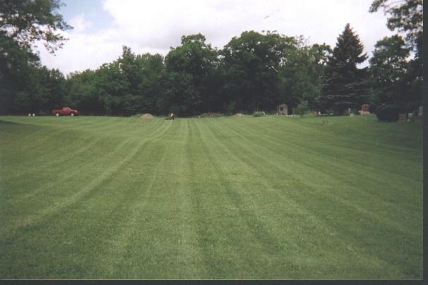 cemetery stripes1.JPG