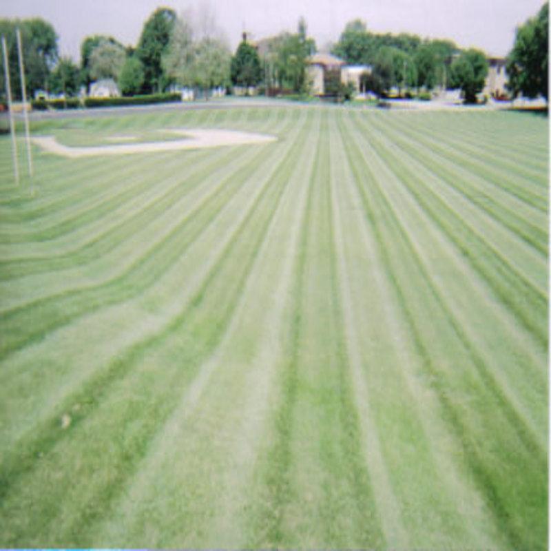 church stripes.jpeg