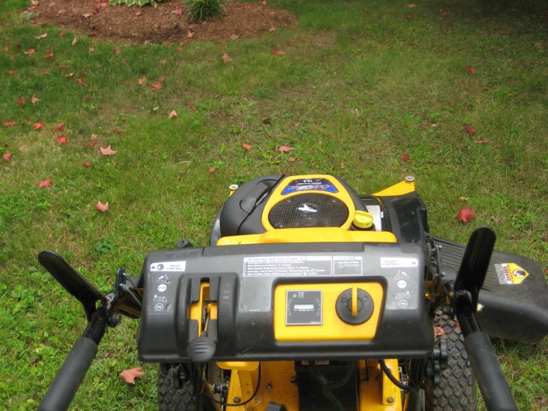 cubcadetburning bush trim work 024.jpg