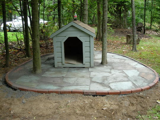 dog house after.jpg