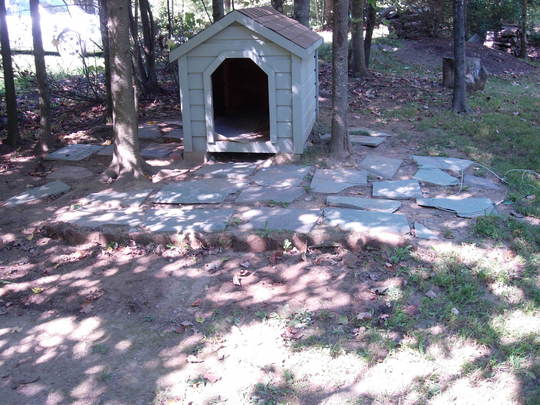 dog house before.jpg