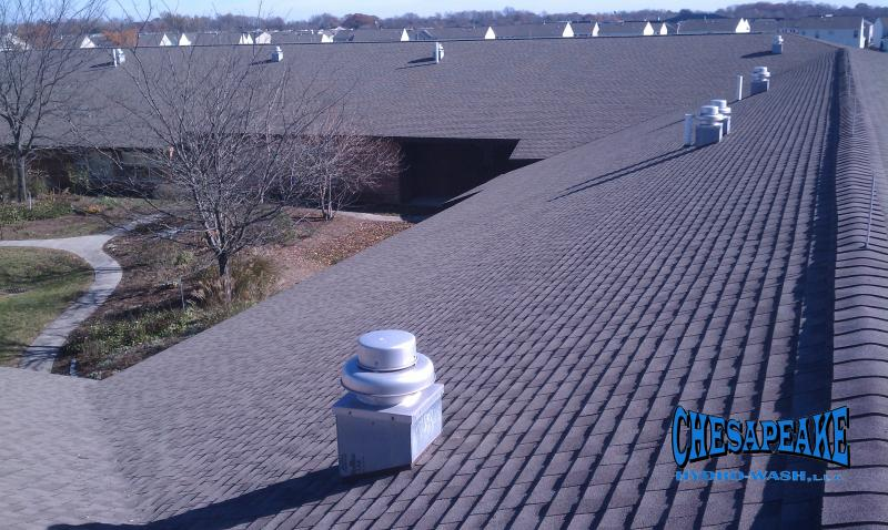 Dover Delaware Roof Cleaning.jpg