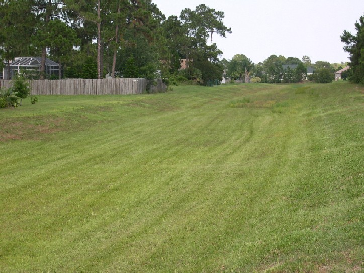 E side drainage mowed smaller file.jpg