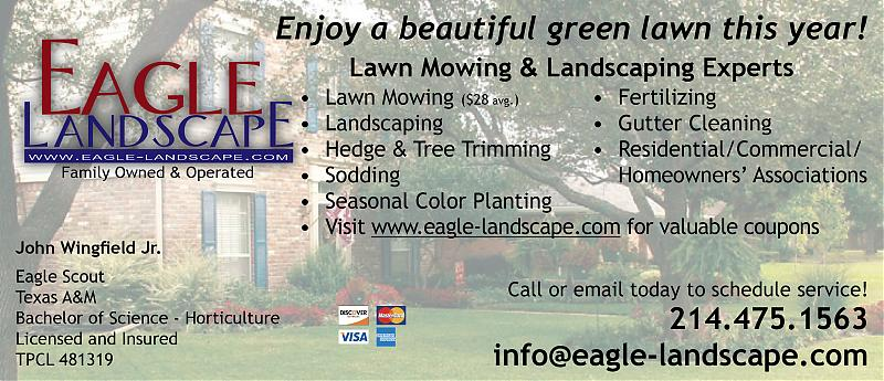 Eagle landscape flyer.jpg