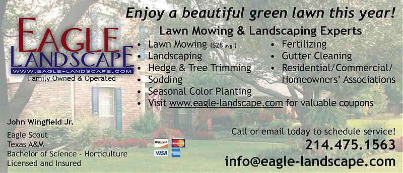 Eagle landscape flyer.jpg