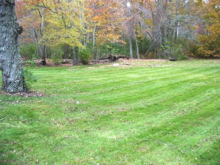 eileen mulch 1pass.jpg