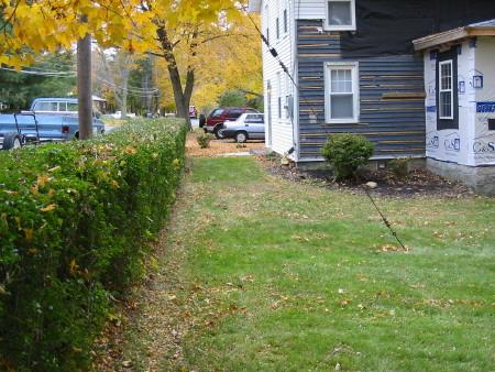 eileen mulch front 1 pass.jpg