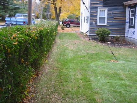 eileen mulch front 2 pass.jpg