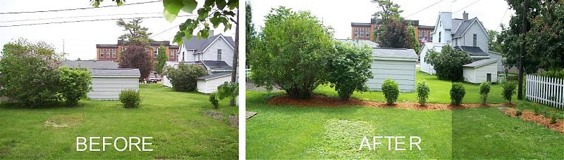 final backyard east.jpg