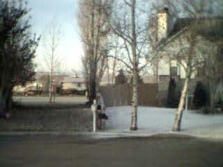 frontyard2.jpg