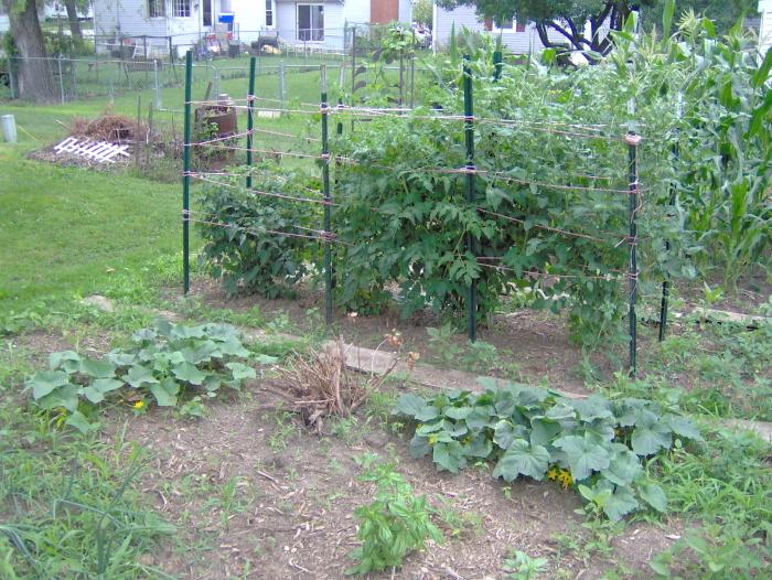 garden2c.jpg