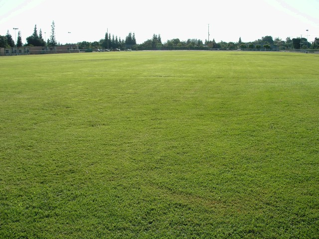Golden West Soccer Fields Design IV-01.jpg