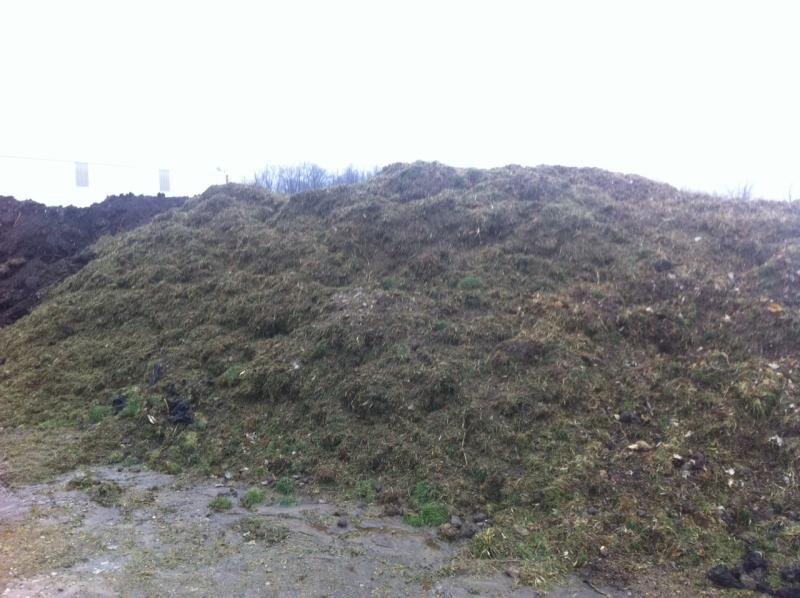 grass clippings-compost.jpg