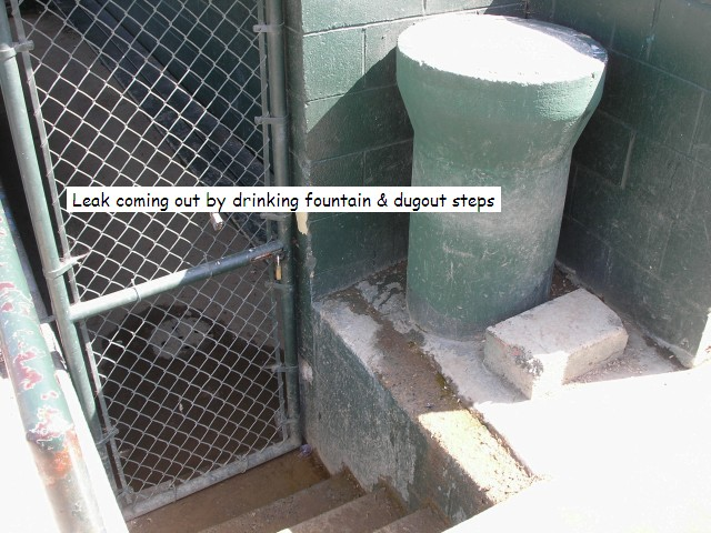 Green Acres VBB Dugout Leak 4-07 IV-02.jpg