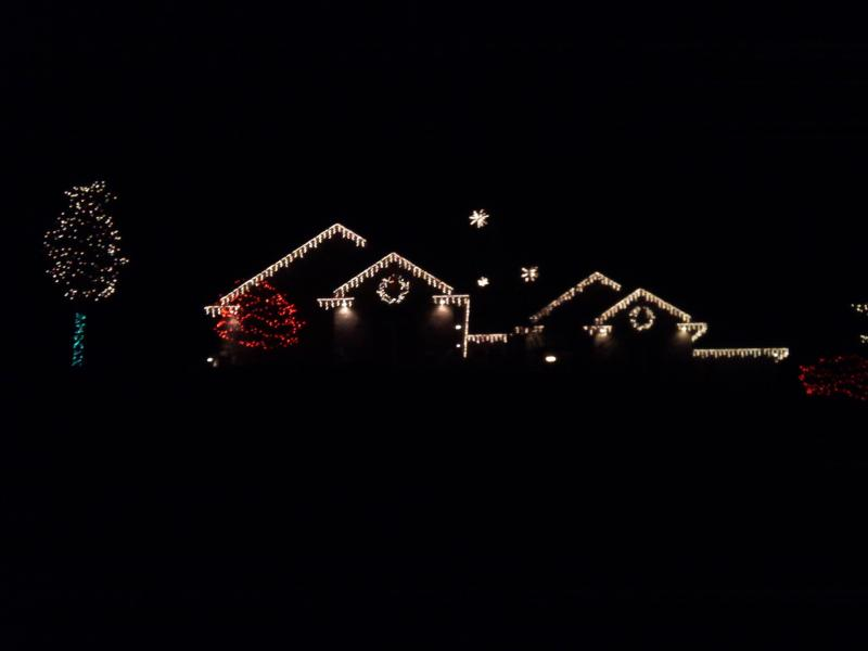 holiday lights 033.jpg