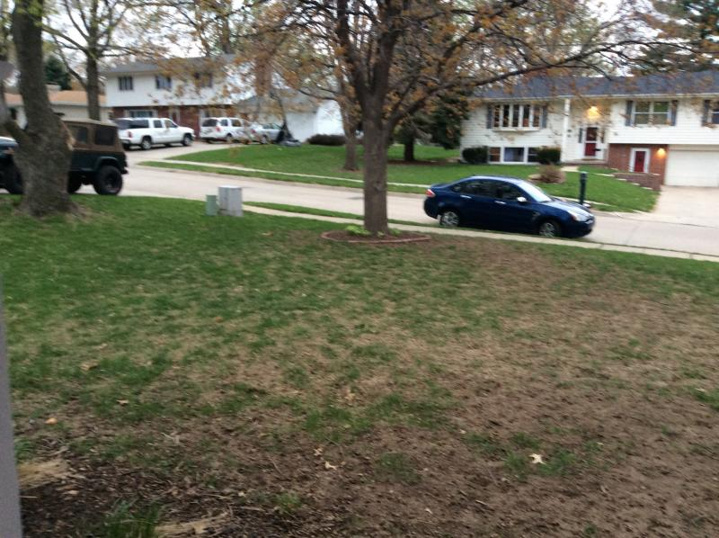 Turning A Dirt Patch Into Lawn Lawnsite