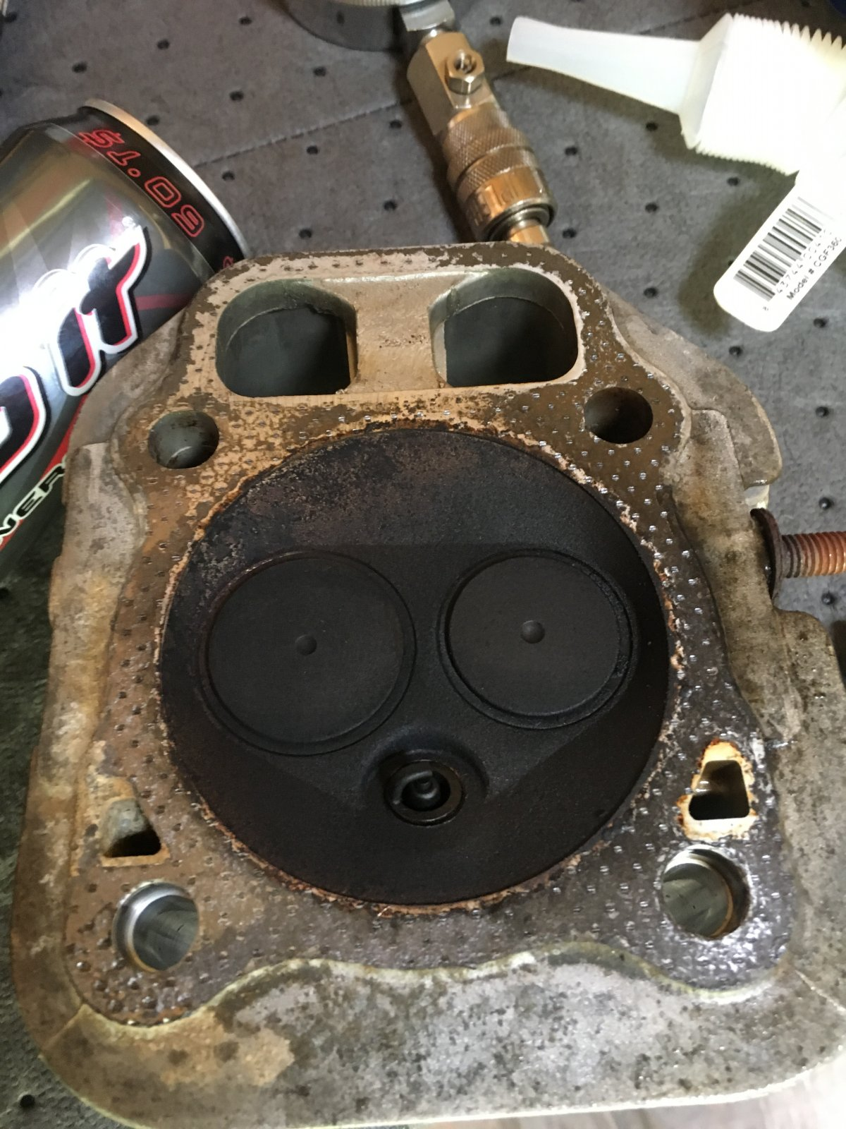 Can a blown head gasket and/or bad reed cause fuel starvation