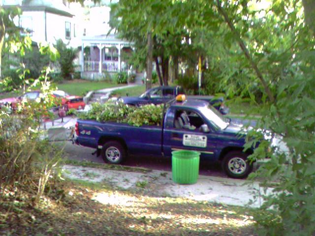 Jackson-tree cleanup-loaded truck.jpg