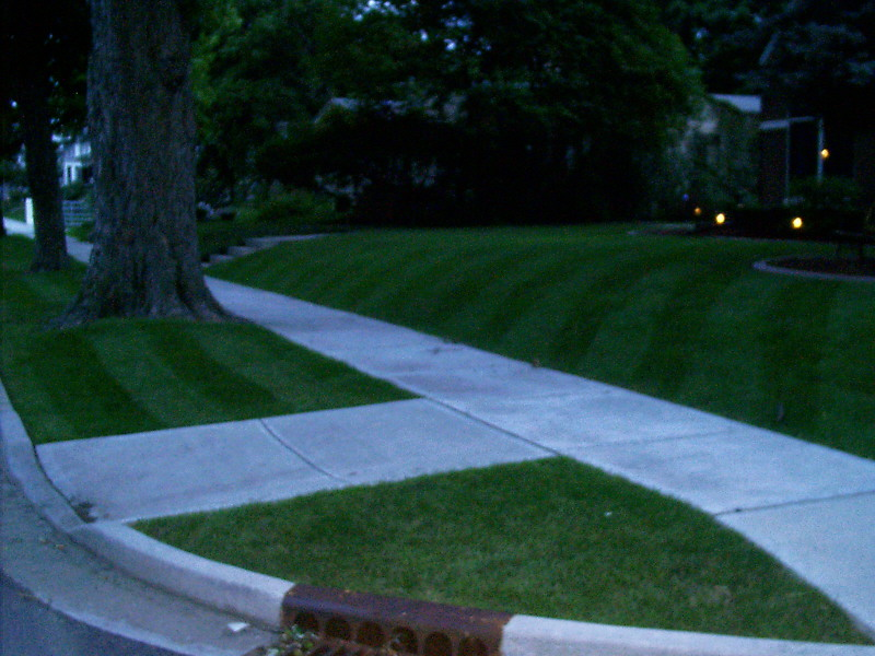 kyles lawn stripes 020.jpg