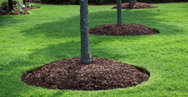 landscape-mulch-bed-installation-services-from-carmel-landscaper.jpg