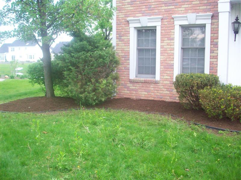 landscaping pixs 08 095 (Medium).jpg