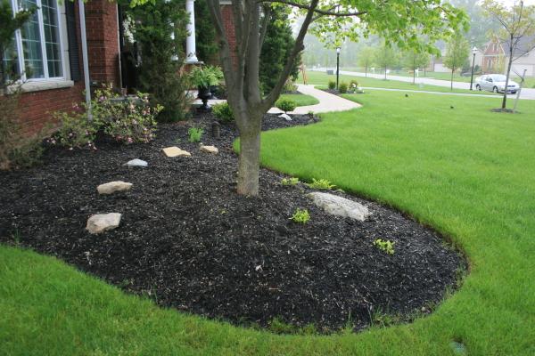 landscaping00010.JPG