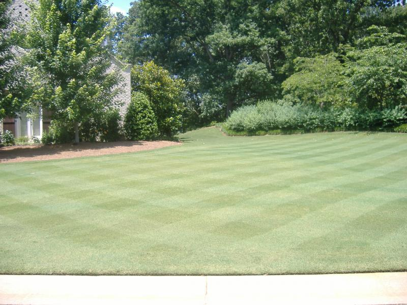 lawn GA Club 002.jpg
