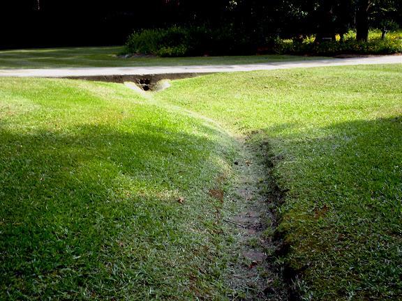 lawn stuff 005.JPG