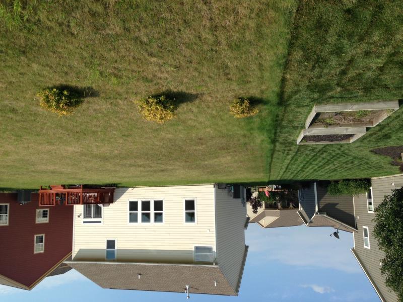 lawnbefore3.jpg