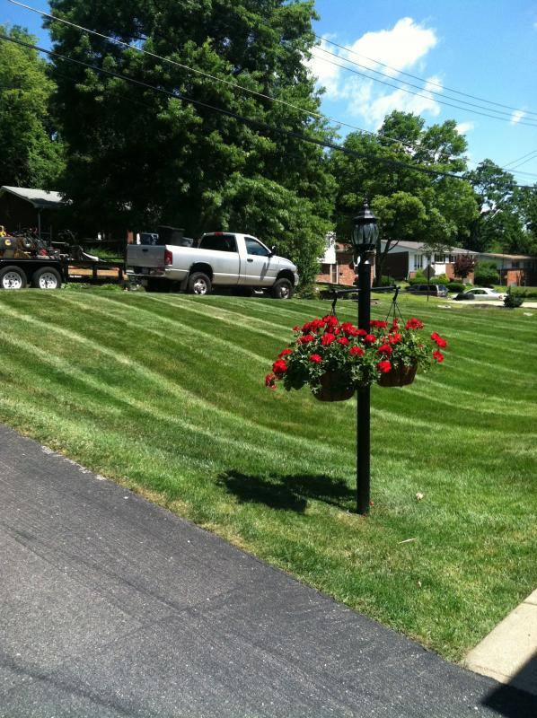 Lawns1.jpg