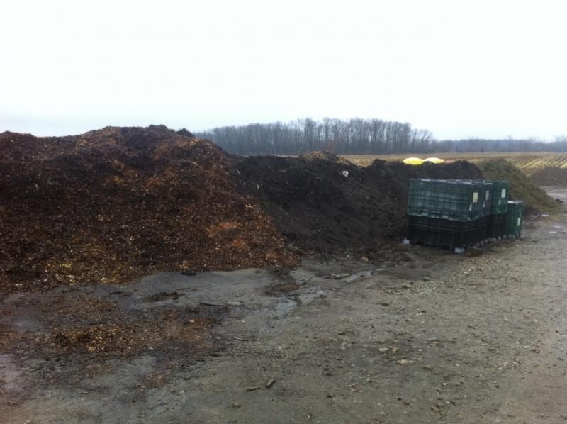 leaves-manure-grass compost.jpg