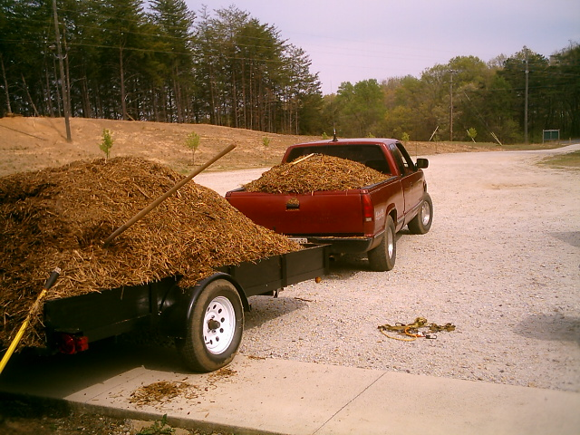 load mulch.JPG